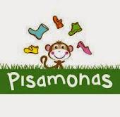 Pisamonas