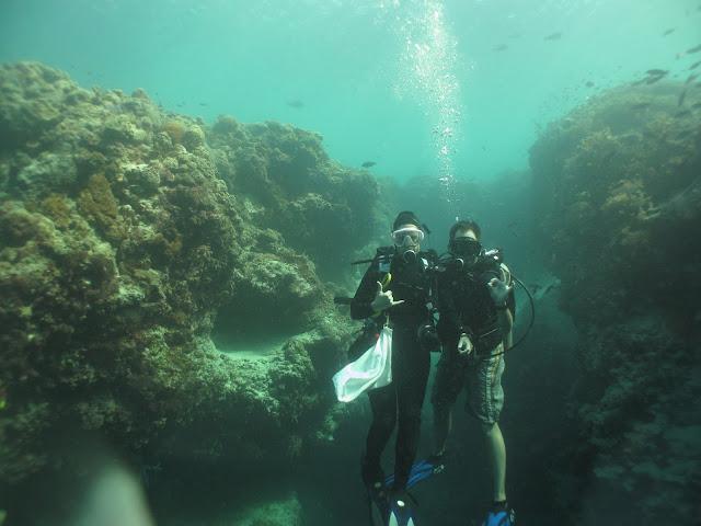 Diving in Hanging garden
