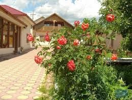 Villa Speranta