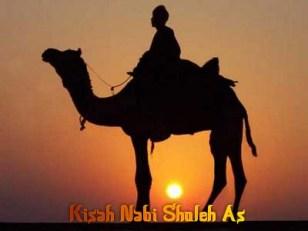 Biografi Nabi Shaleh