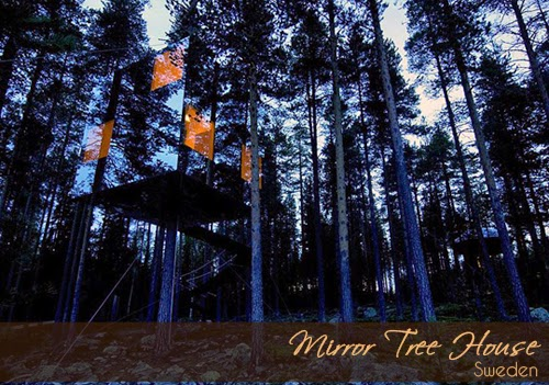 Treehouse mirror concept, mirror concept for interior design, interesting places in sweden, tempat menarik di sweden