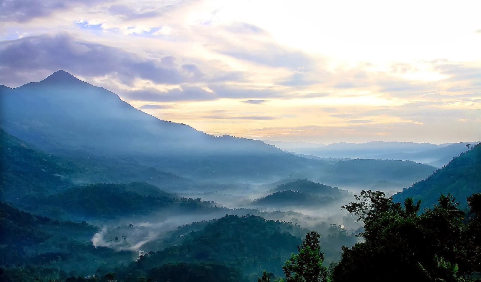 Landscape, Munnar, Kerala