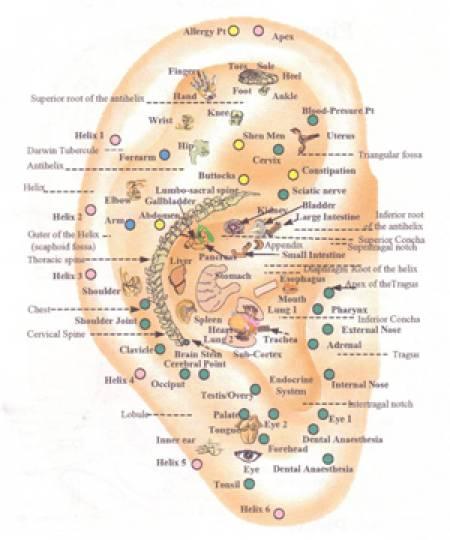 Delírio tremens termos de sintomas