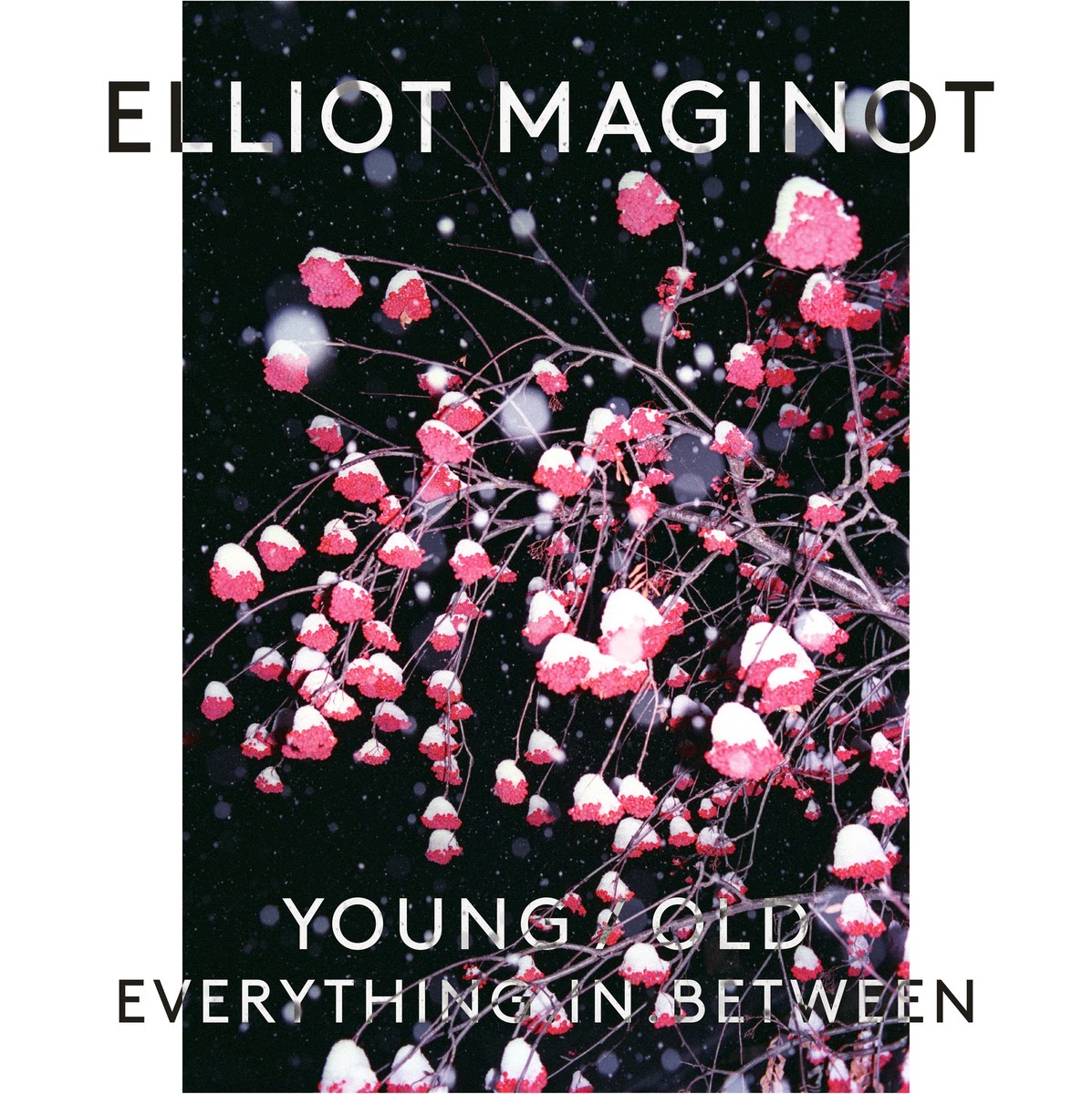 http://www.d4am.net/2015/02/elliot-maginot-youngoldeverythinginbetw.html