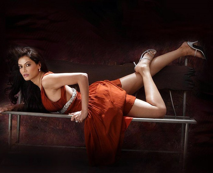 Payal Rohatgi Hot Photo Gallery