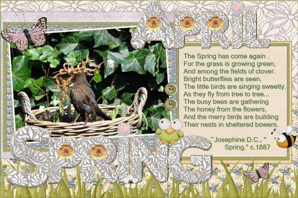 April 2016 - Spring bird