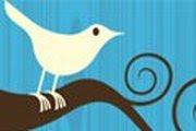 Volg Francien op Twitter