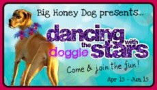 Dancing with the Doggie Stars Contest!
