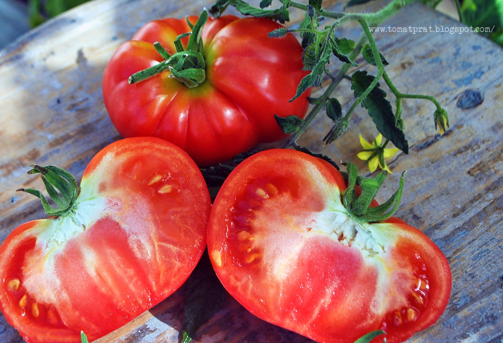 Old Fashioned Tomato Seeds