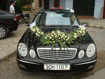 Xe cưới Mercedes E240,Mercedes E240,Mercedes