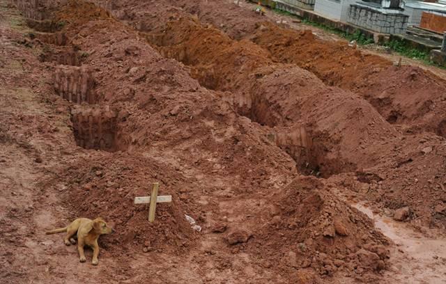 Landslides In Brazil. landslides in Brazil,
