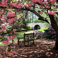 Virginia Is For Nature Lovers The Norfolk Botanical Gardens