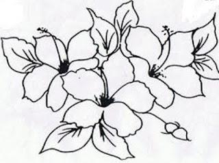desenho de flores hibiscos