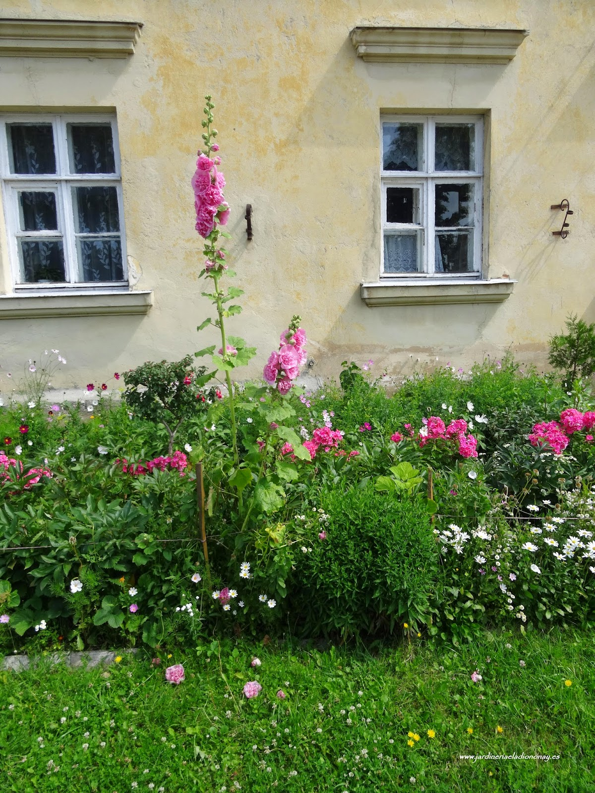 Jardineria eladio nonay diferencia macizo arriate for Arriate jardin