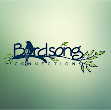 Birdsong Connections