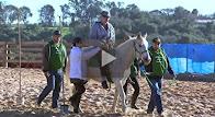 Reabilitação gratuita com cavalos