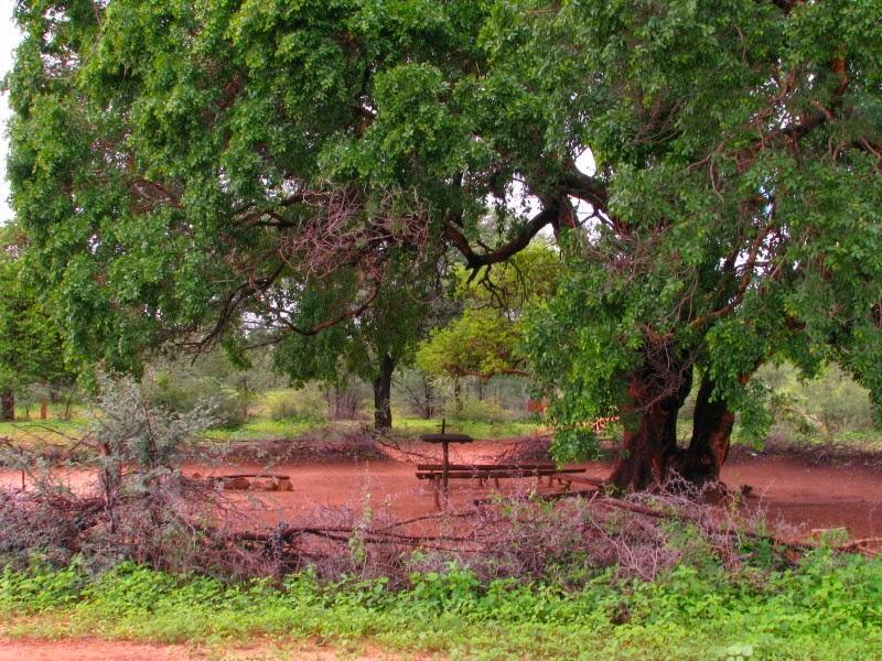Namibia - church in bush