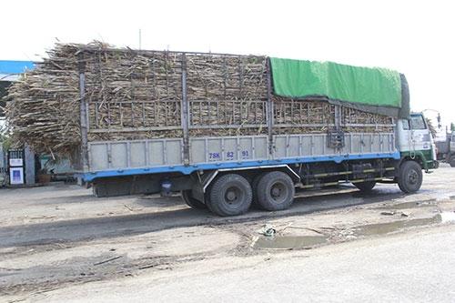 """Gia Lai: Đường Đông Trường Sơn """"oằn mình"""" gánh xe quá tải"""