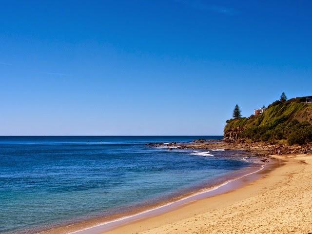sunshine coast daily - 640×480