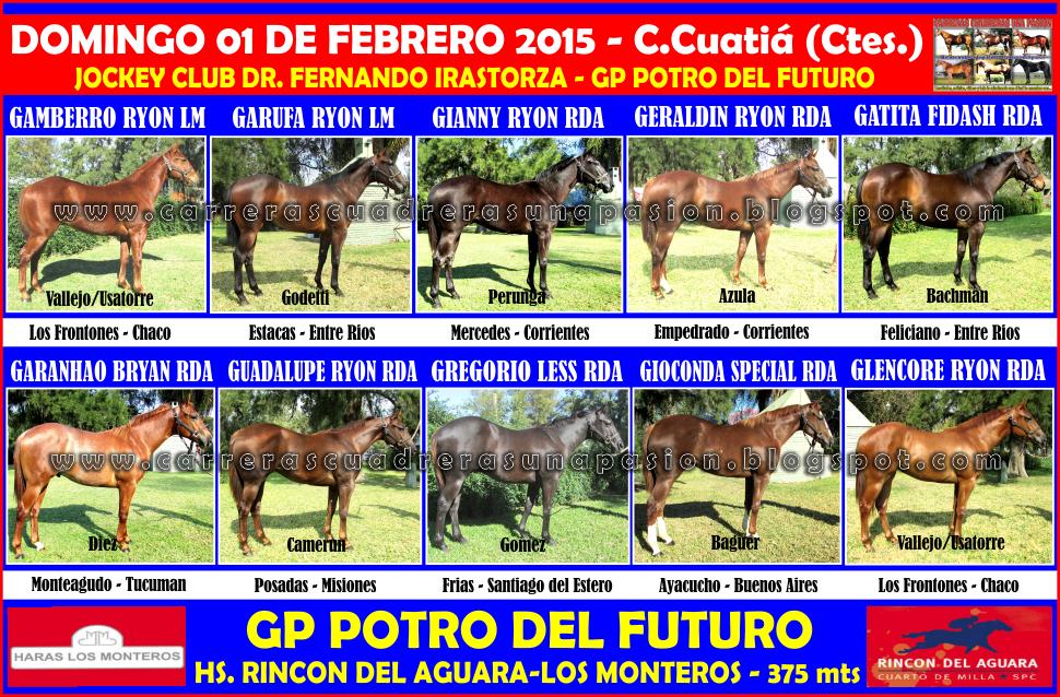 GP POTRO DEL FUTURO - 375 MTS.
