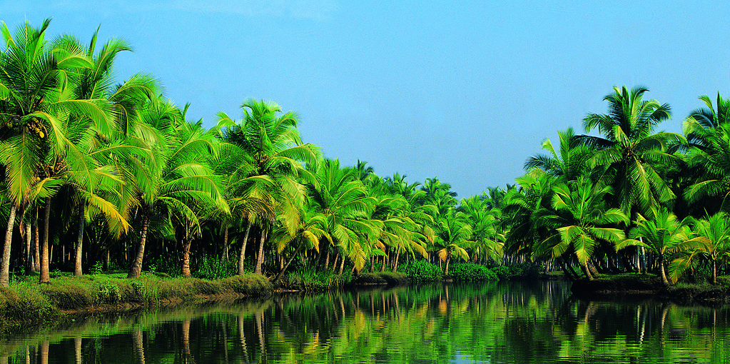 Best Places To Visit In Kerala India Traveller Guide