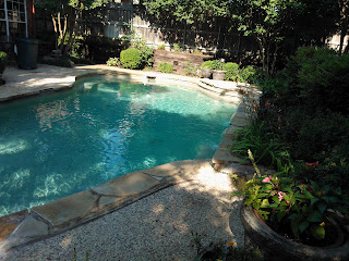 """swimming pool"", ""back yard"", ""filling in a koi pond"", ""drilling holes in a koi pond"", ""getting rid of a koi pond"", ""getting rid of mosquitoes"""