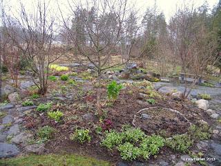 Planteringar/Surhålet
