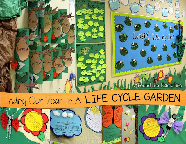 Ending Our Year in a Life Cycle Garden