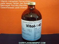 VITOL-140 (Holland)