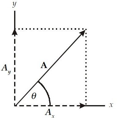 Vektor Fisika : Pengertian, Gambar, Penjumlahan, Besaran, Notasi ...