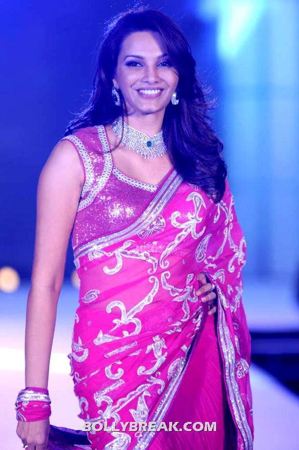 Diana Hayden in beautiful pink sari with silver work - Sunita Govitrikar, Kiran Juneja, and Diana Hayden for Manish Malhotra-CPAA