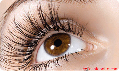 Care your Eyelashes