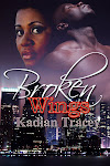 Submitted to publisher - Broken Wings