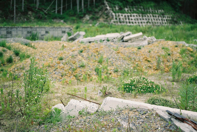ruins of houses and weeds