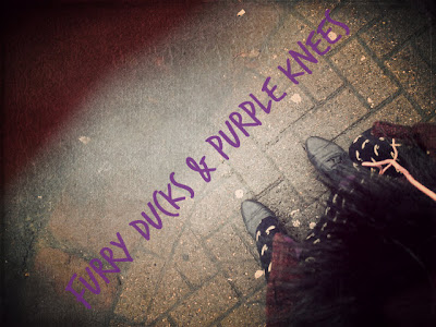 Furry Ducks and Purple Knees
