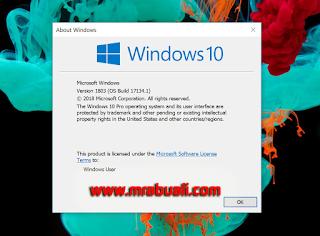 2018 بالنواتين 64/32 temp-windows10-april