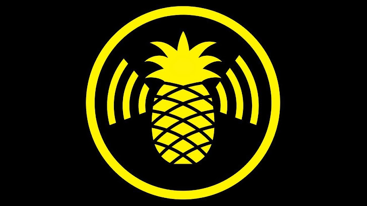 Researcher to Demonstrate Poor SSL Implementations Using Pineapple WiFi