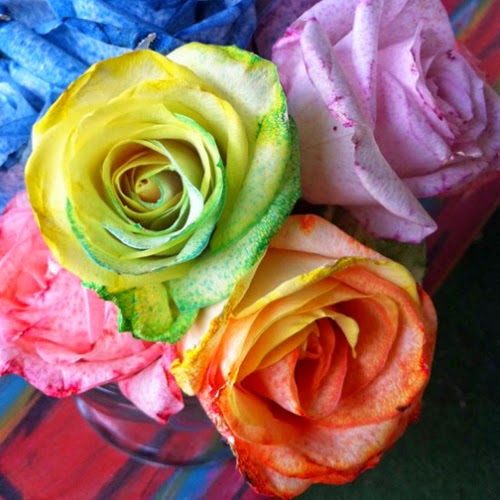 Tie dye your summer 14 fun ways to use tulip tie dyes for How to make tie dye roses
