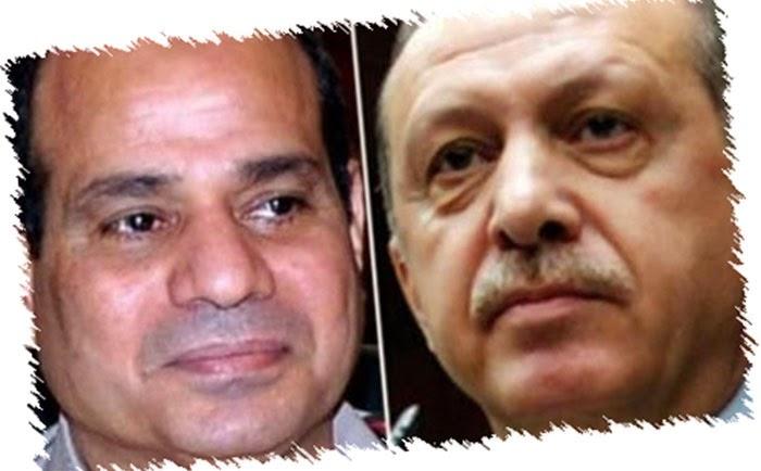 أردوغان يتطاول مجدداً على السيسي