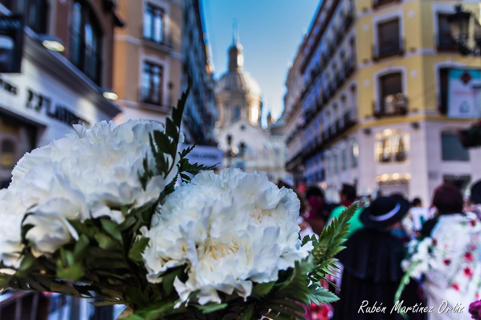 Fiestas del Pilar Página Oficial Facebook