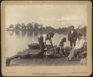 postcard from Gippsland featuring men on jetty packing fish for Melbourne