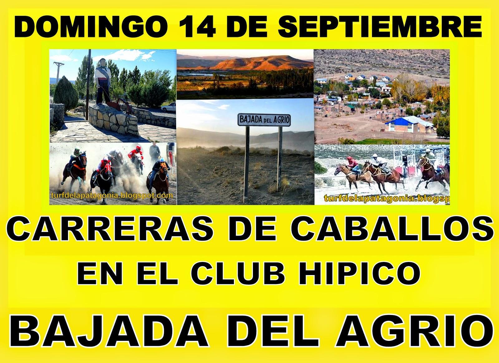 http://turfdelapatagonia.blogspot.com.ar/2014/09/1409-programa-de-carreras-de-caballos_60.html