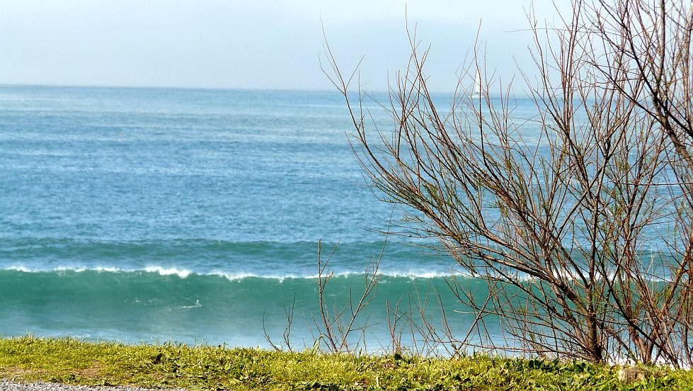surf30 mar verde rompiendo sobre la hierba