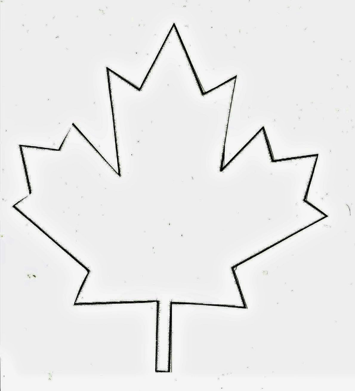 happy canada day the most of every moment