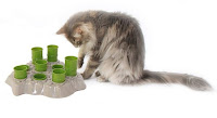 toy for cats