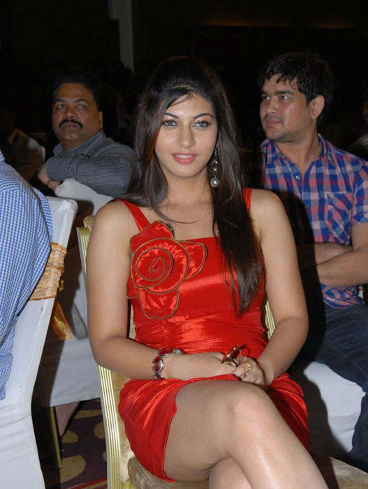 saara josh at disco audio launch cute stills