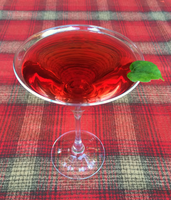 Cranapple-tini Recipe for Fall | www.jacolynmurphy.com