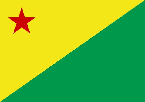 Bandeiras de todos os Estados Brasileiros!