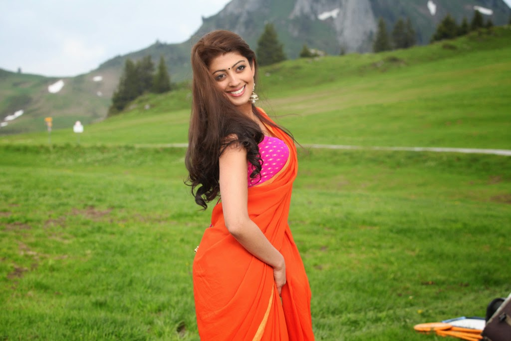 celebsnext bollywood and south indian cinema actress