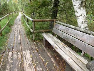 Steg am Hohlohsee zur Besucherführung